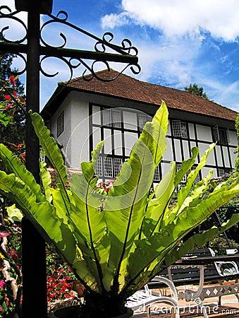 Sunny resort in Malaysia