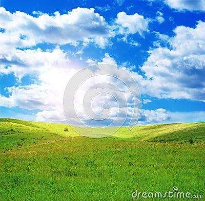 Sunny spring day