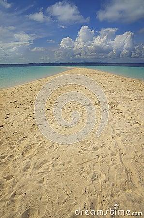 A sunny, tropical beach