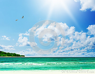 Sunny tropical beach on the island
