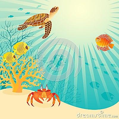 Free Sunny Underwater Life Royalty Free Stock Image - 25508876
