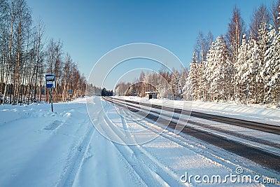 Sunny winter road