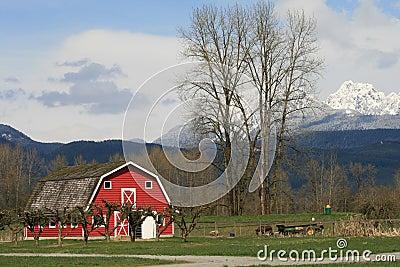 Sunnybrook фермы