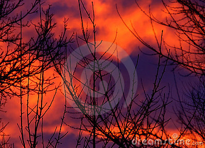 Sunrise Abstract Nature Pattern