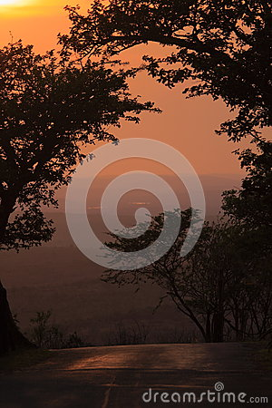 Sunrise in the african bush