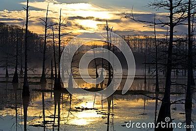 Sunrise on the Bayou
