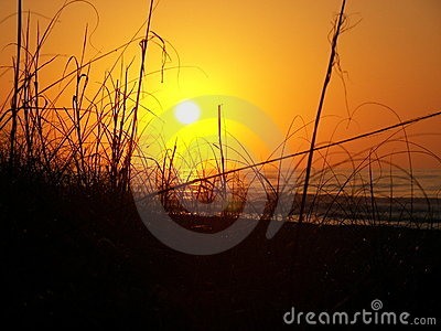 Sunrise Behind the Dunes