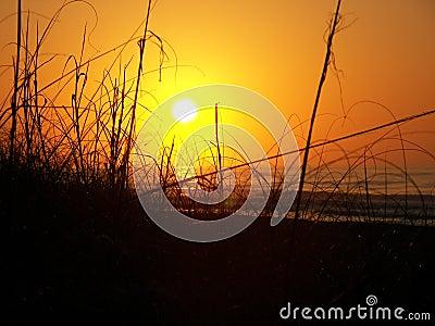 Sunrise Behind the Dunes