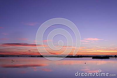 Sunrise in Camargue