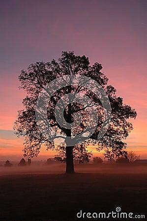 Sunrise in Canton OH