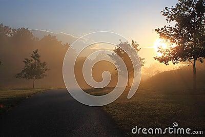 Sunrise in Foggy Morning
