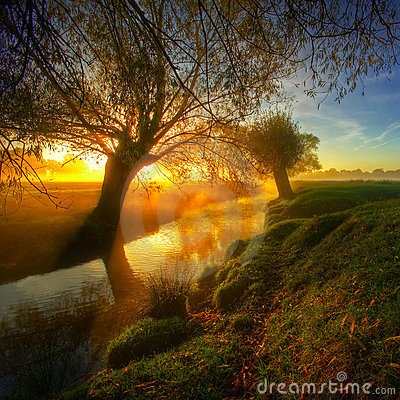 Free Sunrise In The Park7a Stock Image - 4714781