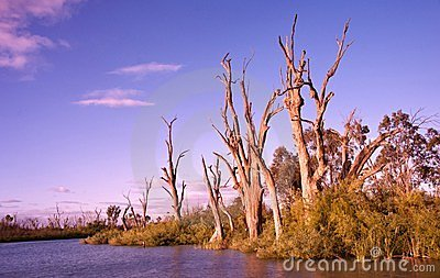 Sunrise on the murray river