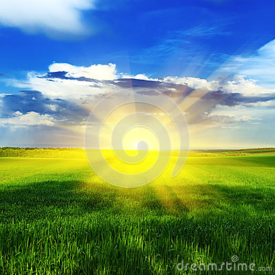 Free Sunrise Over A Spring Meadow Royalty Free Stock Images - 29179889