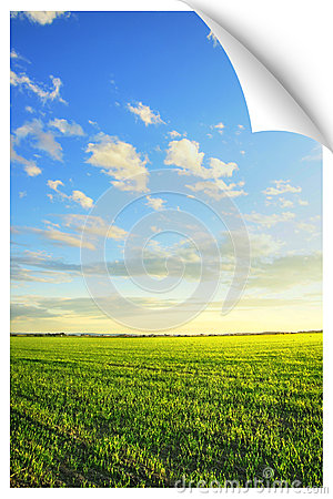 Sunrise over the field poster