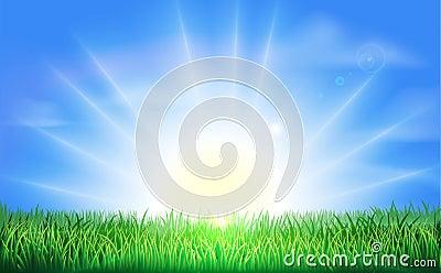 Sunrise over green field of grass