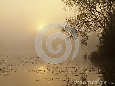 Sunrise over a misty pond