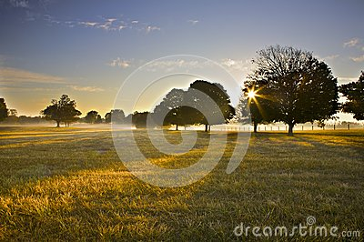 Sunrise Over Open Field