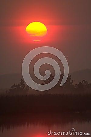 Sunrise over wild lake