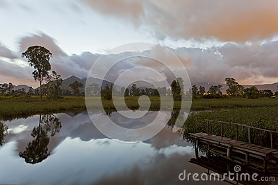 Sunrise at pond in wetland of Hong Kong