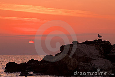 Sunrise on a rocky shore