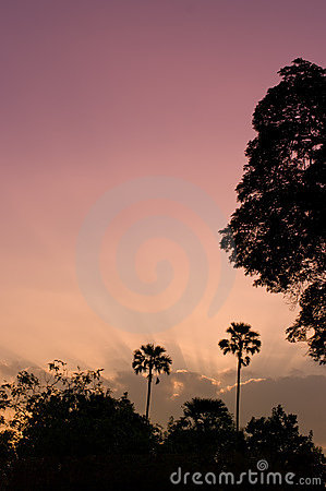 Sunrise sky, Nice nature light