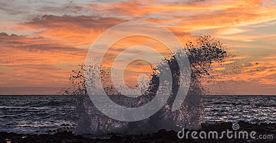 Sunrise Splash at Sandy s