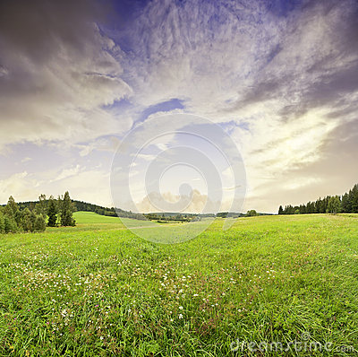 Sunrise and summer meadow