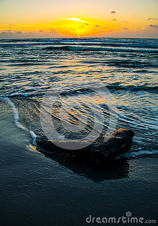 Free Sunrise Texas Beach Deep Vertical Nature Ocean Recycling Royalty Free Stock Photos - 53688568
