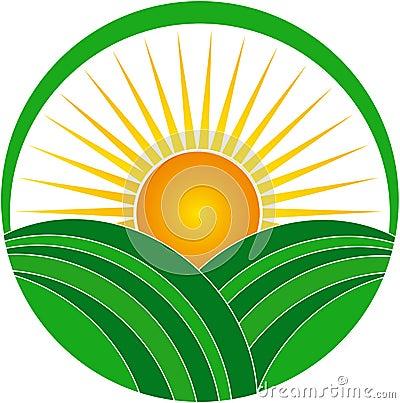 vector drawing represents sunrise logo design.