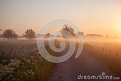 Sunrise whit dew