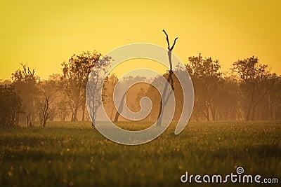Sunrise at yellow waters, Kakadu National Park,