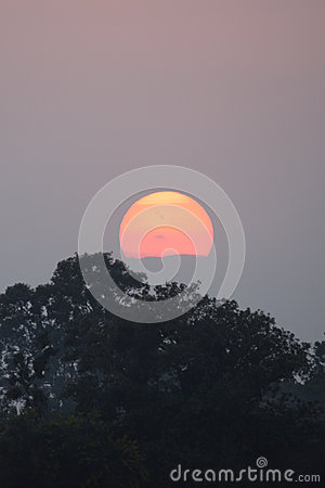 Sunset above Indian jungle
