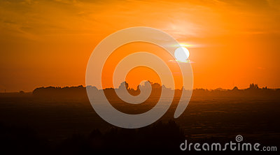 Sunset against the background of silhouettes of tr