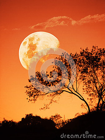 Free Sunset And The Rising Moon Stock Photography - 45312392
