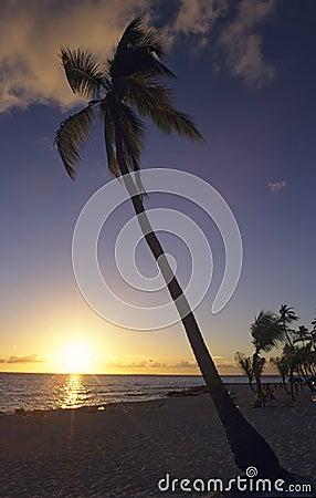 Sunset - Bayahibe beach - Dominican republic