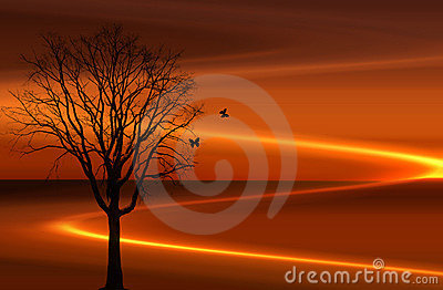 Sunset beems