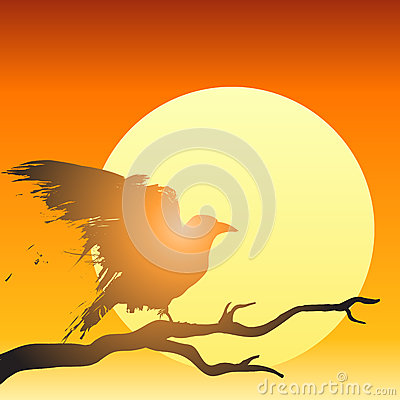 Sunset bird vector