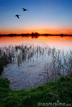 Free Sunset By The Lake Royalty Free Stock Image - 2277396