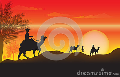 Sunset with a camel