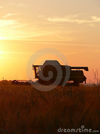 Sunset Combine Harvester