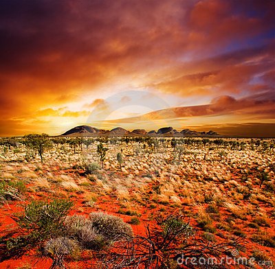 Free Sunset Desert Beauty Royalty Free Stock Photo - 9739845