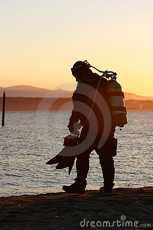 Free Sunset Dive Royalty Free Stock Photography - 203967