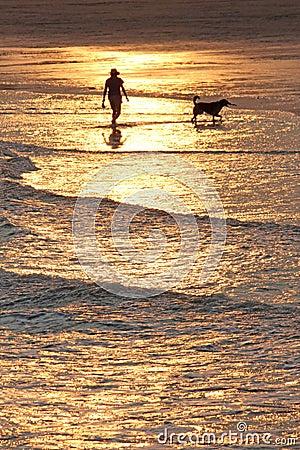 Free Sunset Dog Walk Stock Photos - 56321493
