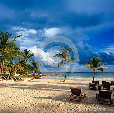Sunset Dream beach with palm tree over the sand. Tropical Paradise. Dominican Republic, Seychelles, Caribbean, Mauritius. Vintage