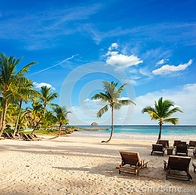 Free Sunset Dream Beach With Palm Tree Over The Sand. Tropical Paradise. Dominican Republic, Seychelles, Caribbean, Mauritius. Vintage Royalty Free Stock Photos - 29017108