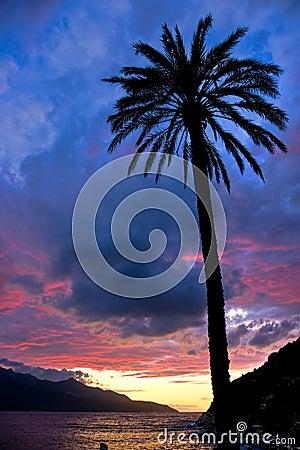 Sunset at Forno, on the Biodola Bay, Elba island.