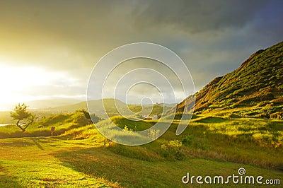 Sunset on green grass hills