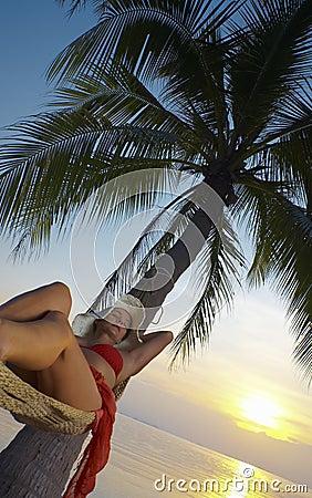 Sunset and hammock