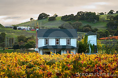 Sunset at a home in a Sonoma Vineyard